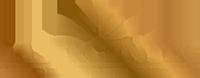 Lasercenter.sk Logo